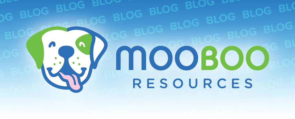 mooboo blog