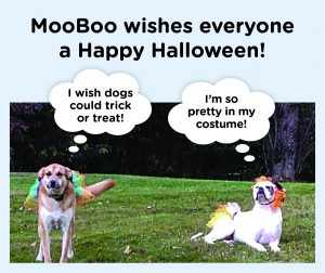 mooboo resources autism doing halloween right